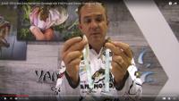 Gary Yamamoto Zako Swimbait Video