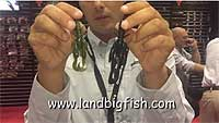 Jackall Chunk Craw Video