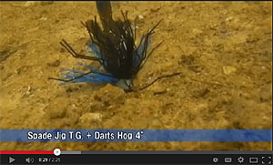 Jackall Darts Hog Video