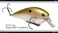 Strike King KVD Magnum Squarebill Pro-Model Crankbaits Video