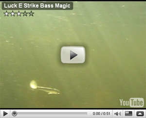 Bass Magic Swim Bait