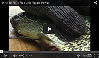 Rapala Electric Fillet Knife & Fork Video