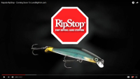 Rapala RipStop Video