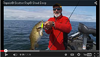 Rapala Scatter Rap Shad Deep Video
