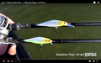 Rapala Shadow Rap Shad Deep Video
