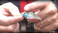 Rebel Bluegill Crankbait Video