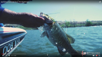 DUO Realis Spinbait 80 G-Fix Video