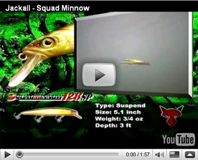 Jackall Squad Minnow SP Jerkbaits Video