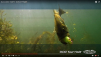 Storm 360 GT Searchbait Video