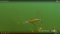 Storm Smash Shad Video