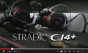 Shimano Stradic CI4+ Spinning Reel Video