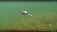 Berkley Digger Crankbait Video