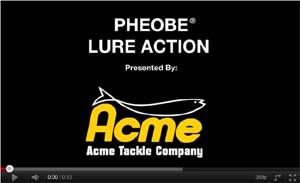 Acme Phoebe Spoon Video