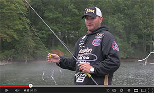 Cashion Elite Series Umbrella Rig Casting Rods Video