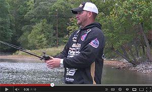 Cashion Elite Series Flipping Casting Rods Video