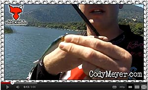 Jackall Clone Fry Video
