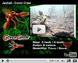 Jackall Cover Craw Video
