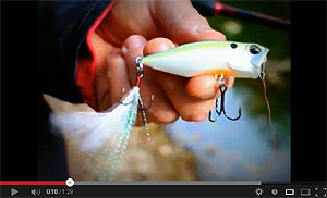 DUO Realis Popper 64 Video