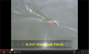 Hard Hitch Swimbait