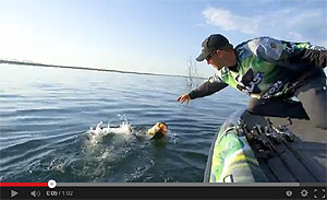 Megabass ITO-Shiner Jerkbait Video