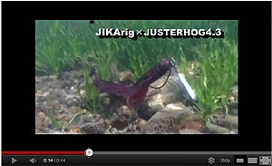 Owner Jig Rig Series Video