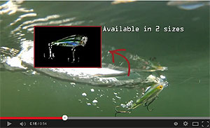 Koppers  Live Target Glass Minnow Baitball Popper Video