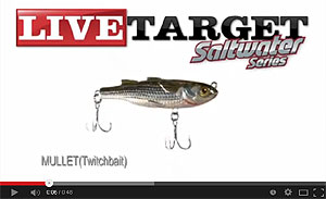 Saltwater Series Mullet Twitchbait