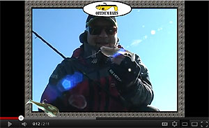 Optimum Top Of The Line Swimbaits Video