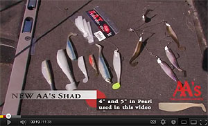 AA Worms Shad Series Swimbait Video
