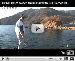 Spro BBZ-1 Jr Swimbait Video